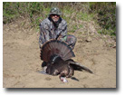 North Carolina Wild Turkey Hunting