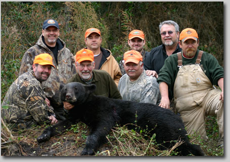North Carolina Black Bear Hunting